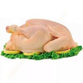 Venta de Pollos al por Mayor y Menor