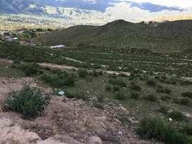 venta excelente terreno en tafi del valle