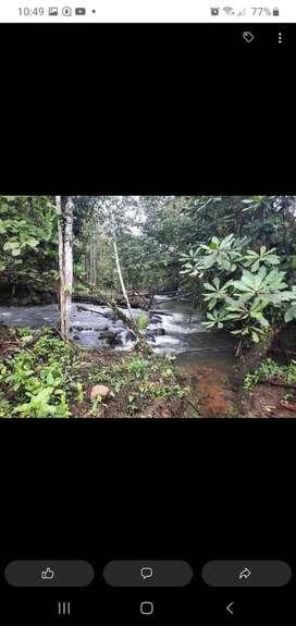 Se vende terreno junto al Río, para planificación de proyecto turístico  vivienda, o sembrios de productos agrícolas.