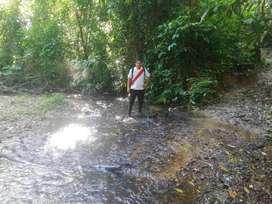 Terreno Tarapoto de 15 hectareas abundante agua a dos horas y media de la ciudad por carretera asfaltada