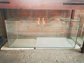 Peces - Acuario 120cm x 40cm x 40cm