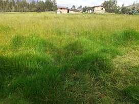 Ocasion vendo 1 hectarea de inverna