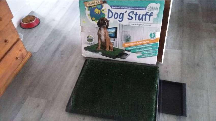Vendo bandeja Sanitaria para perro chico 0