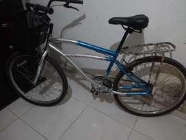 Bicicleta señoritera Clacica