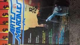 revista artes marciales