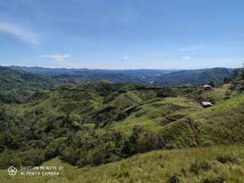 Venta Finca Alejandria-San Rafael Antioquia
