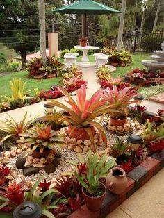 Oferto servicio Jardinero Especializado, Técnico Profesional en Gestión de Recursos Naturales