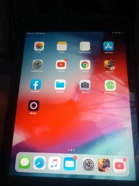 iPad 2 Mini con Estuche