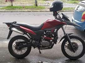 Brothers Z1 250cc