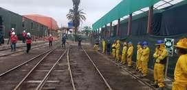Necesito Diez carpinteros para la ciudad de Tacna-Perú disponibilidad inmediata solo llamadas sr. Sotelo