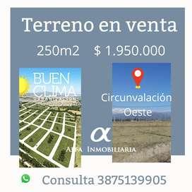 Alfa Inmobiliaria Vende! Terreno en Buen Clima