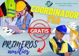 COORDINADOR ALTURAS