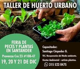 Taller de Huerta Urbana