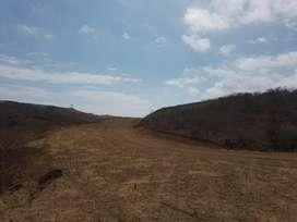 Venta Terreno 21195 mt2 para proyecto Inmobiliario en zona Gavilanez atrás Coliseo