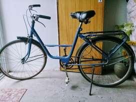 Bicicleta Vintage - Rodado 24