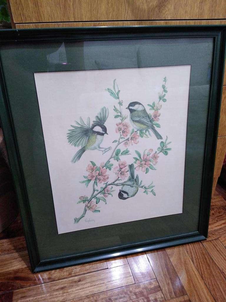 Cuadro lámina pájaros enmarcado Jill Fogelsong 0