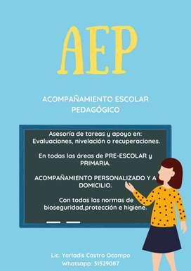 """Acompañamiento Escolar Pedagógico """"AEP""""250"""