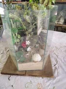 Herbario de plantas artificiales