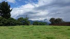 Venta de terreno de 12.000 m2 en la Forestal