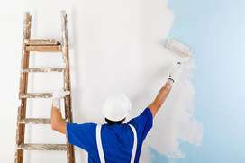 Maestro pintor estucador