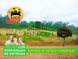 SU FINCA FAMILIAR DE 1.000M2 A 9.900 USD CON 100 USD DE ENTRADA FIRMAS CONTRATO, QUINTAS RANCHO SPONDYLUS,SUR DE MANTAS1