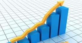 Asesoría en Estadística y Economía