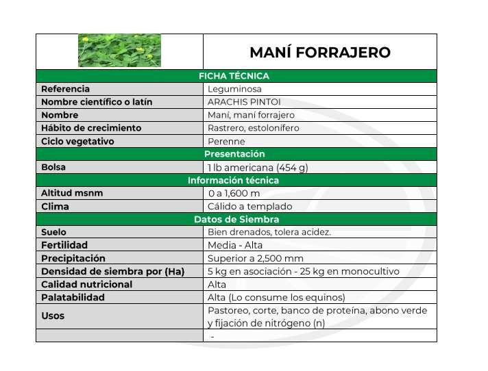 Venta de Maní Forrajero