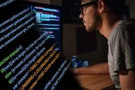Buscamos Programador Junior