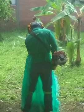 Servicio de Tala de árboles, poda, mantenimiento de Jardines