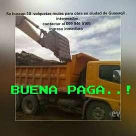Se necesitan volquetas tipo mula . Para obra en ciudad de guayaquil . Buena paga