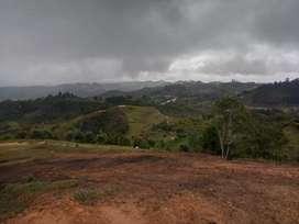 Lote de 2500 mts San Vicente Ferrer vereda piedra gord