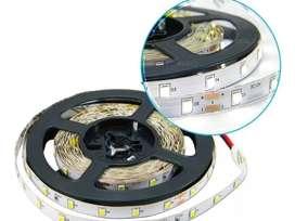 Tira de LED 5050 Interior Blanco Frío