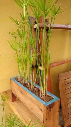 Maceta de madera + falso papiro