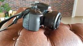 Cámara nikon D530+lente nikon 35mm 1.8 + lente nikon 18-140mm