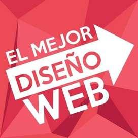 Diseñador Web en Palmira Profesional