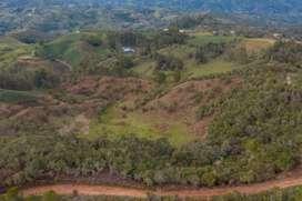 Finca con vista a Rionegro y tres explaneaciones