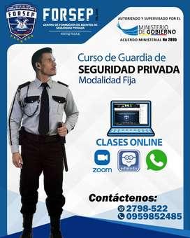Curso Online de Seguridad Privada
