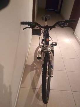 Bicicleta de Damas