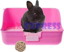 Baño Conejo Grande Rectangular