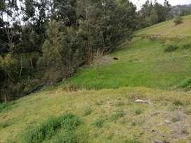Hermoso terreno en la parroquia Belisario Quevedo