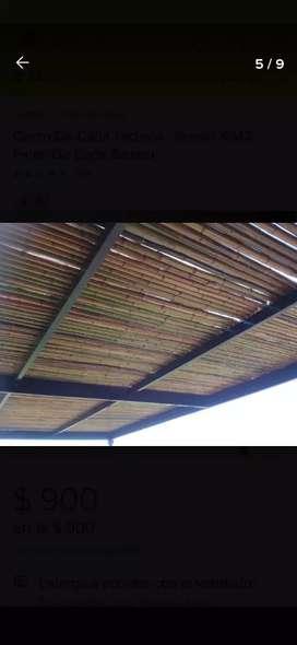 Cerco de cañas de bambú) Tacuara