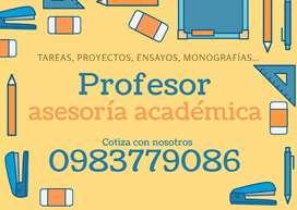 Profesor matemática, física, cálculo.