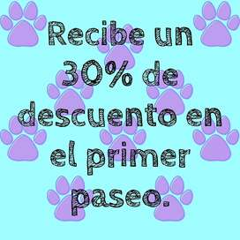 Servicio de paseo para perros