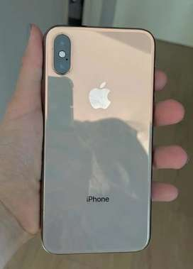 Celular iPhone X 10