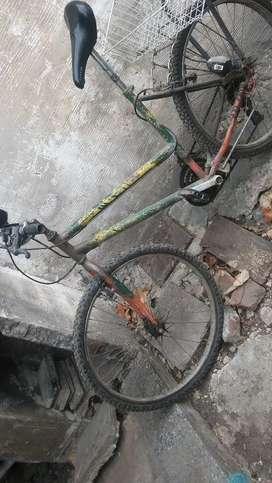 Bicicleta td trr /h muj.