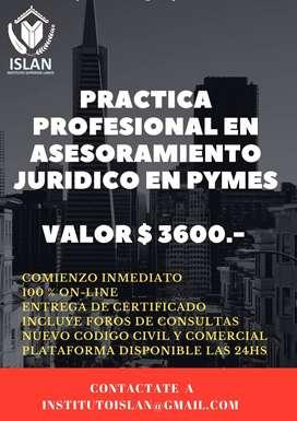 Practica Profesional en Asesoramiento Juridico a Pymes