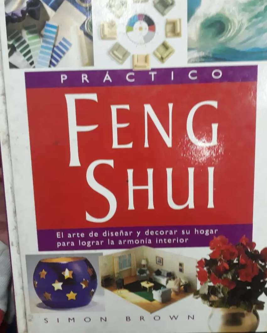 PRACTICO FENG SHUI (usado)