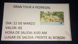 Tour a pedregal