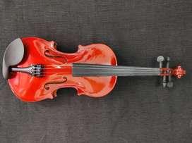 Violine de Estudio