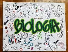 Se brindan asesorías en cursos de biología y afines